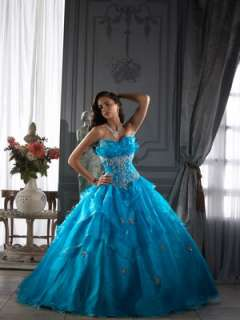 Layered Embroidery Organza Ball Gowns Quinceanera/Wedding/Prom dresses