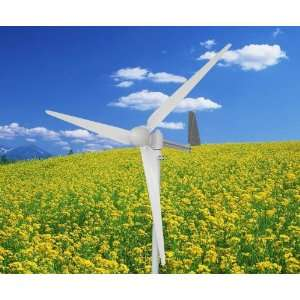 750W 750 Watt Residential Wind Generator  Kitchen & Dining