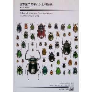 9784902649031): Kaoru Sakai and Masayuki Fujioka: Books