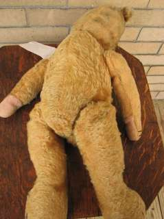 Large Antique TEDDY BEAR Early 1900s f122
