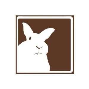 Brown Disapproving Rabbits Mug Home & Kitchen