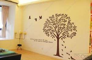 Linden Tree large  71 inch large vinyl wall decals