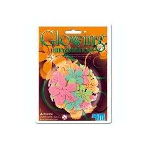 Glow in the Dark Color Glitter Hibiscus Toys & Games