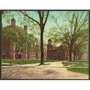Phelps Hall,Lyceum,Yale College,University,CT,c1901