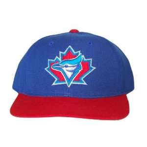 American Needle MLB Toronto Blue Jays Snapback Hat   2