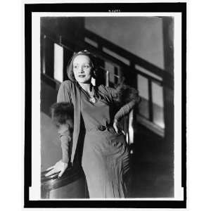 Marlene Dietrich,1901 1992,German American actress,singer