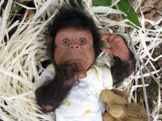 Lifelike Newborn Realistic baby girl Chimpanzee Monkey Chimp Ape OOAK