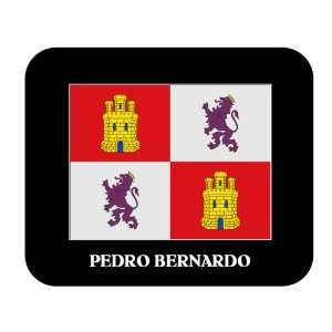 Castilla y Leon, Pedro Bernardo Mouse Pad: Everything Else