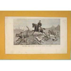 : British Fleet Besika Bay Hunting Beagles Dogs 1877: Home & Kitchen