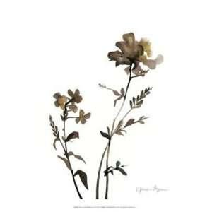 Watermark Wildflowers VI by Jennifer Goldberger 13x16