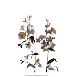 Watermark Wildflowers III by Jennifer Goldberger 13x16