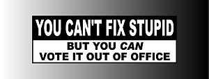 Anti Obama You Cant Fix Stupid Bumper Sticker Decal