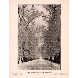 1900 Print Broad Walk Oxford Winter Promenade Picturesque