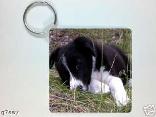 BLACK & WHITE BORDER COLLIE PUPPY PICTURE KEYRING