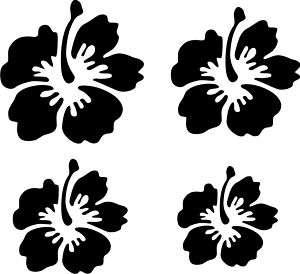 PEGATINAS/STICKERS COCHE MOTO TUNING FLORES HAWAIANAS 2