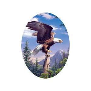 American Eagle   750 Pieces Jigsaw Puzzle Toys & Games