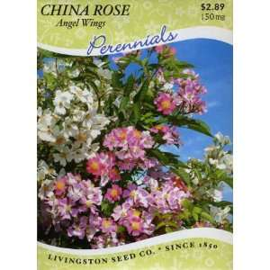 China Rose   Angel Wings (Perennial) Patio, Lawn & Garden