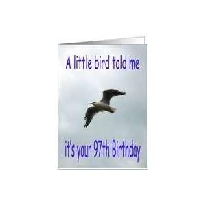 Happy 97th Birthday Flying Seagull bird Card Toys & Games