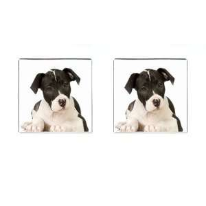 Staffordshire Puppy Dog Square Cufflinks F0015 Everything Else