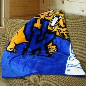 50x60 Stripes Series Royal Plush Blanket Throw