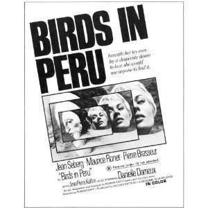Birds in Peru Framed Poster Movie B 11 x 17 Inches   28cm x 44cm Jean
