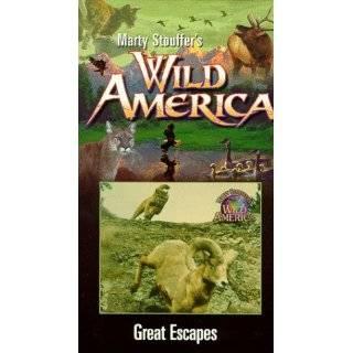 Marty Stouffers Wild America   Dangerous Encounters [VHS