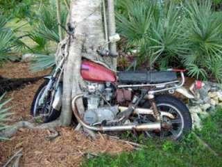 AntSm Banana Motorcycle Solo Seat 9x13 Bobber Harley