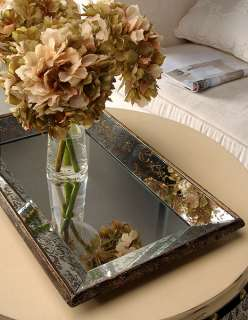 31499   Antique Look Frameless Wall Mirror / Tray 12